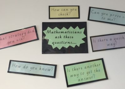 Questions Mathematicians Ask